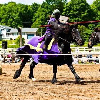 Jouster riding a black draft  horse in a competition