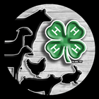 Image of 4-H with livestock logo
