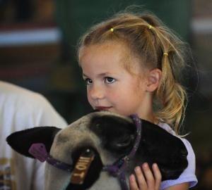 Little girl hugging a sheep