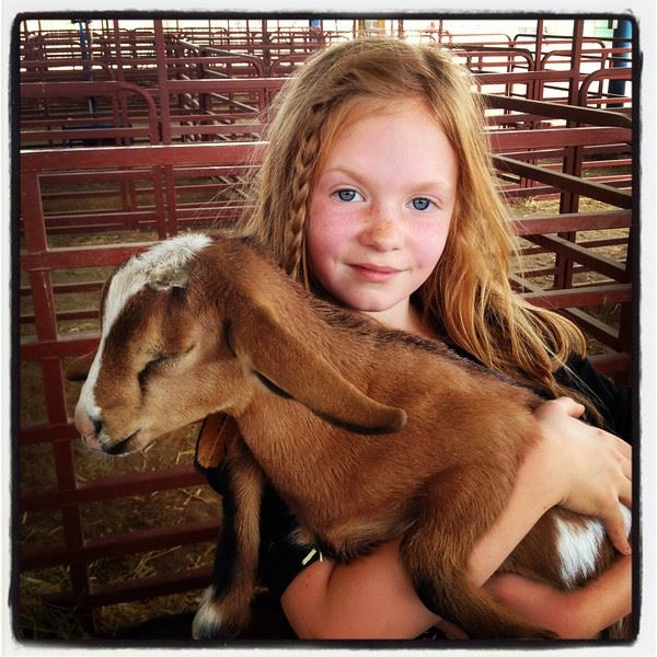 Small girl hugging a brown goat
