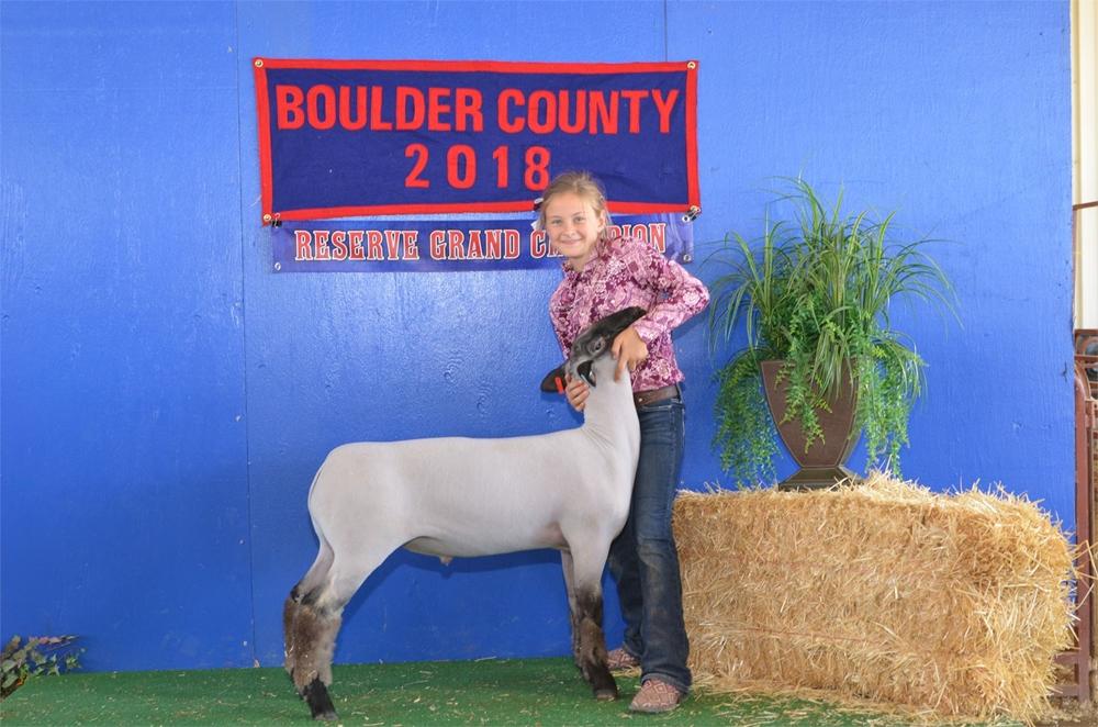 2018 Reserve Grand Champion Market Sheep