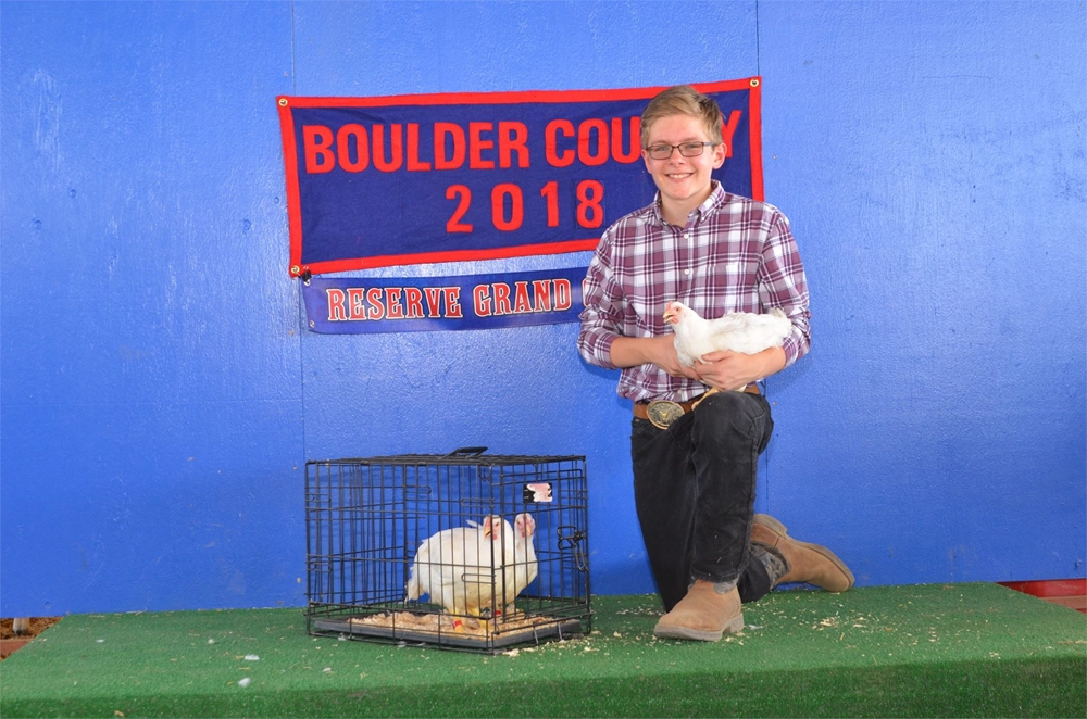 2018 Reserve Grand Champion pen of 3 chickens