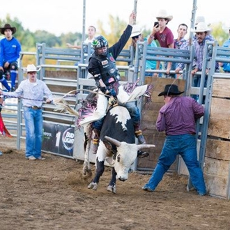 Bull rider on a Bucking Bull