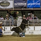 A buckinig bull during the CPRA Rodeo
