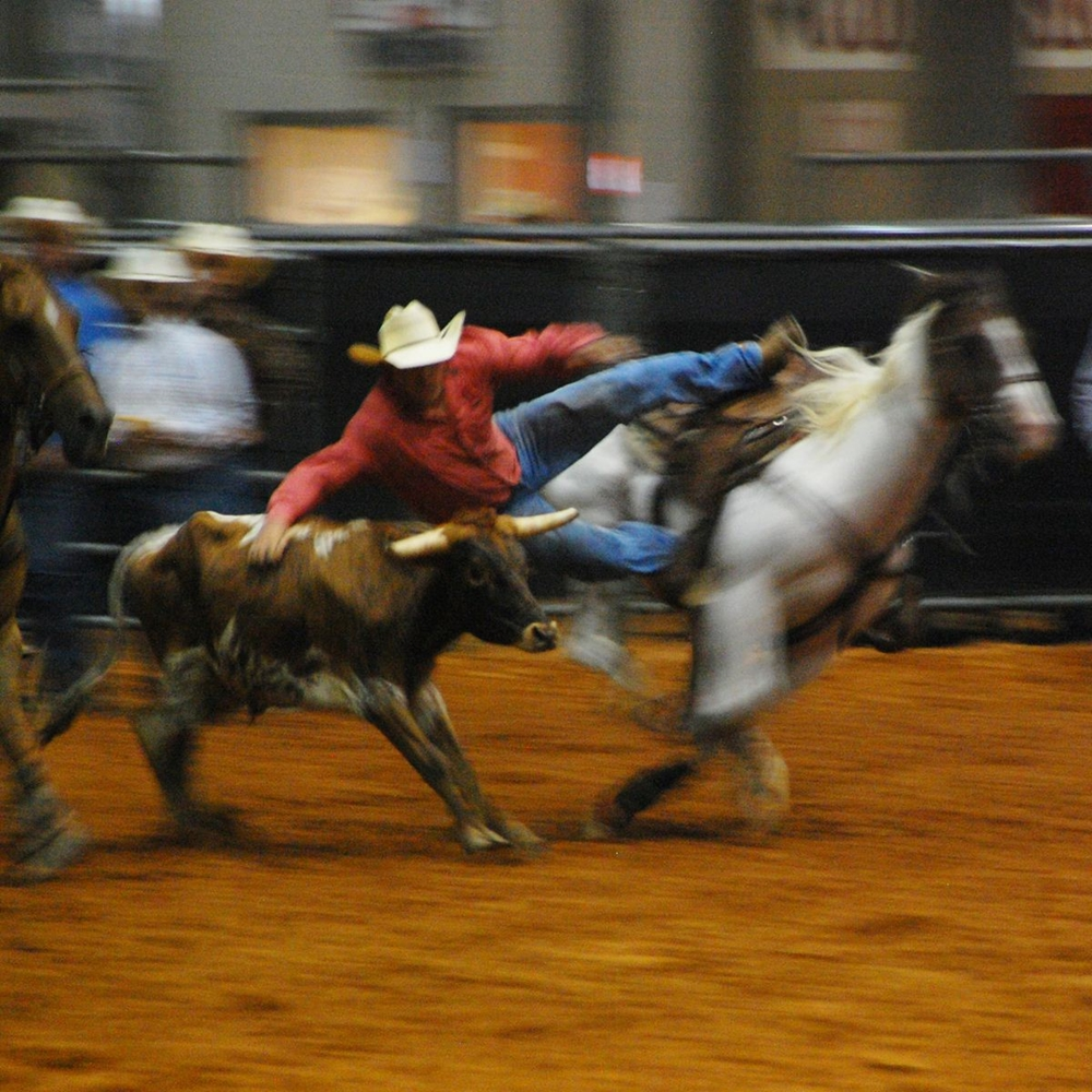 Rodeo Tough