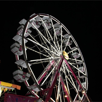 2013 Brazos Valley Fair