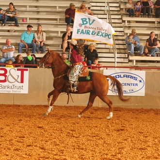2015 Brazos Valley Fair