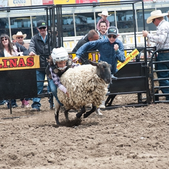 California Rodeo is taking Entries for Mutton Busting Event