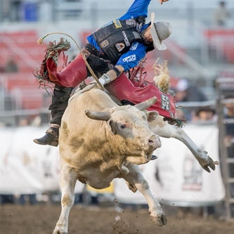 7 OF TOP 25 PROFESSIONAL BULL RIDERS TO COMPETE IN SALINAS