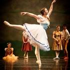 Madeline Jazz Harvey-Ballet