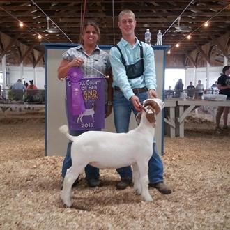 Grand Champion Goat