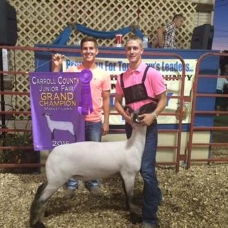 Grand Champion Lamb