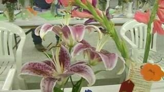 2008 Cass County Fair Art, Photo, Horticulture, Home Ec and Quilt Shows