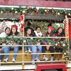 Hop on the Holly Trolley