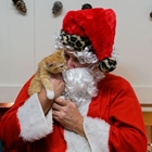 Santa Paws with WCAL