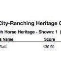 Cowboy Ranch Horse