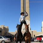 Matt Zimmerman Horsemanship