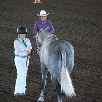 2015 Chowchilla Fair Horse Show