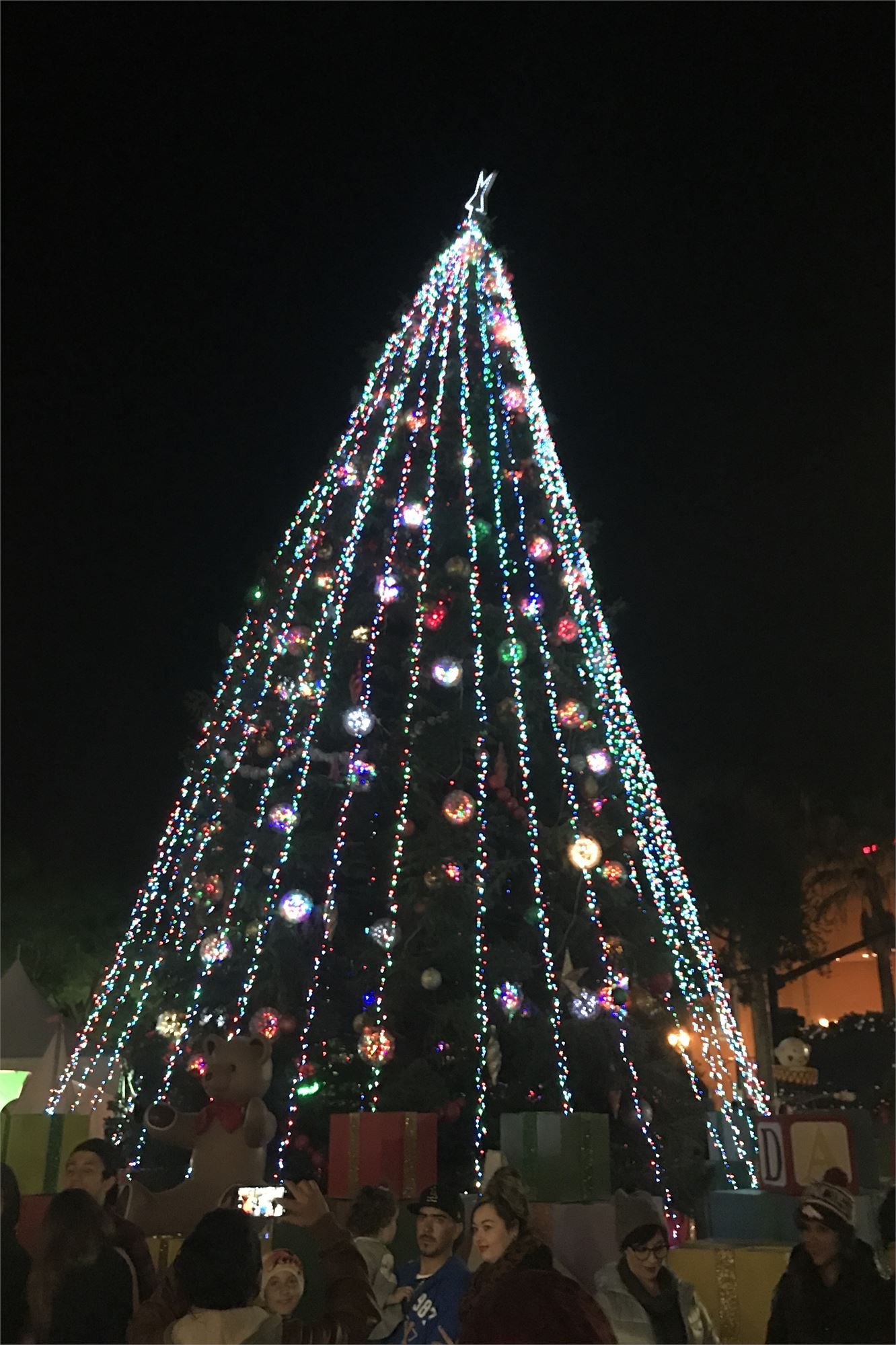 tree lighting 2018