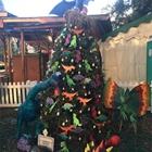 Best High School Tree