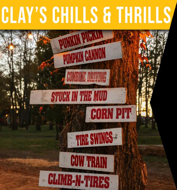 Chills&Thrills_Link