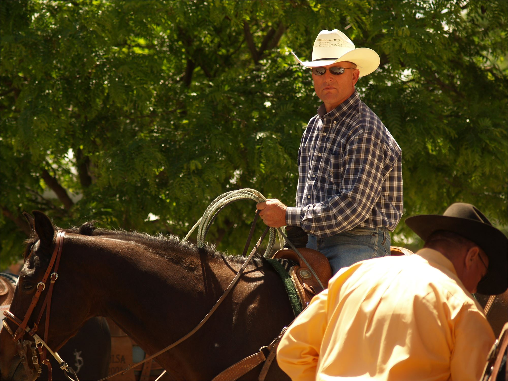 Aqha Apha Amp Ranching Heritage Team Roping Event