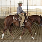 AQHA Ranch Riding