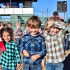 Mutton Bustin 3-4 Year Olds: