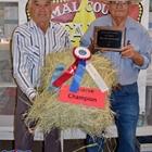 Grand Champion Hay Show