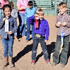 Mutton Bustin 7-8 Year Olds: