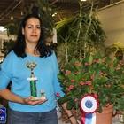 1st Place Cacti