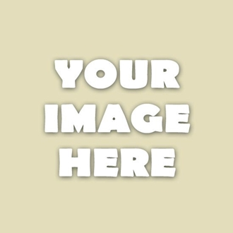 Add Photo Category Here