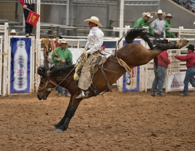 Friday Rodeo Ticket