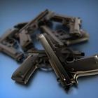 San Mateo County Opposes Gun Shows at Cow Palace