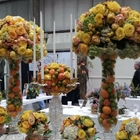 Receive $2 off San Francisco Flower Show | Cow Palace, Daly City