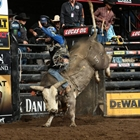 Rodeo cowboys, bull riders head back to Bay Area