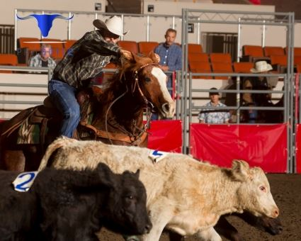 Grand National Livestock Horse Show And Rodeo