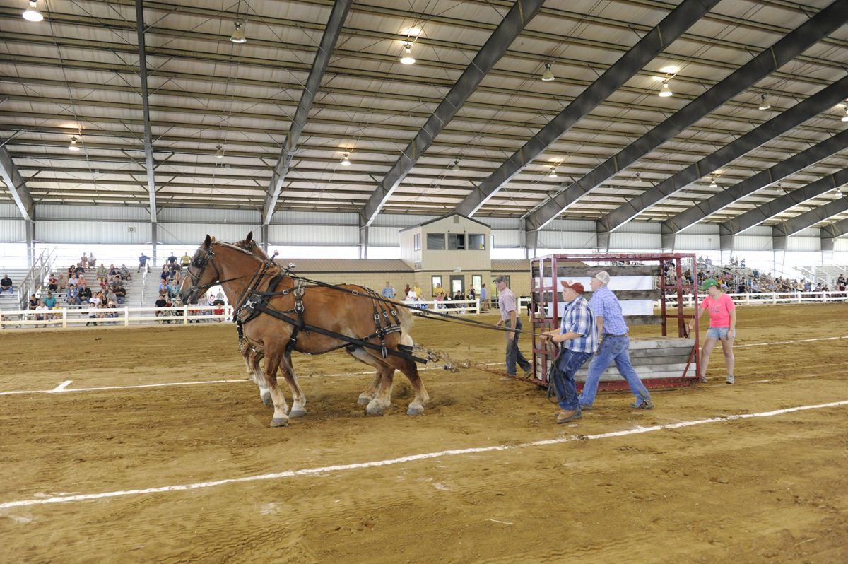 Billy Ray Collison Memorial Horse Pull