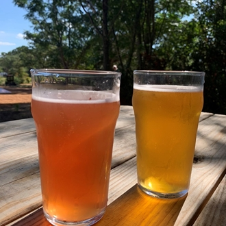 Two glasses of beer on a picnic table.
