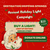 An image with Santa Clause and lights advertising a holiday lights fundraising campaign.