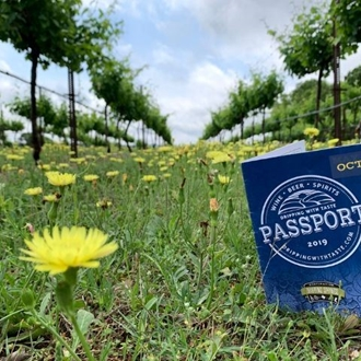 a dripping with taste blue passport in a vineyard with yellow flowers