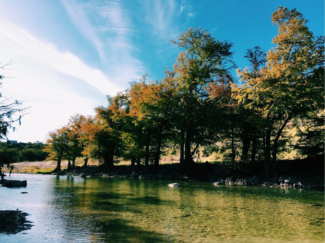 calm water with big trees on the banks of the river with blue skies