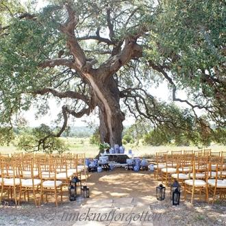 An outdoor wedding ceremony site beneath an oak tree