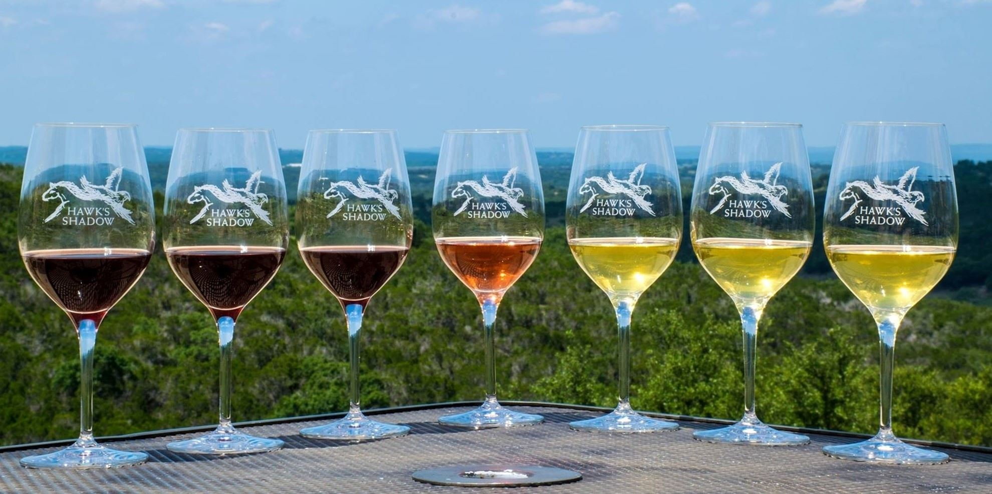 seven wine glasses with seven different kinds of wine in each glass.