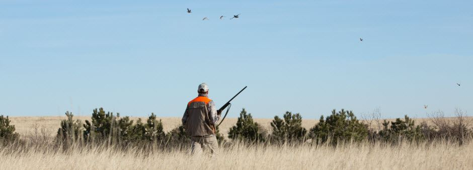 View the hunting maps for the Dickinson, ND area.