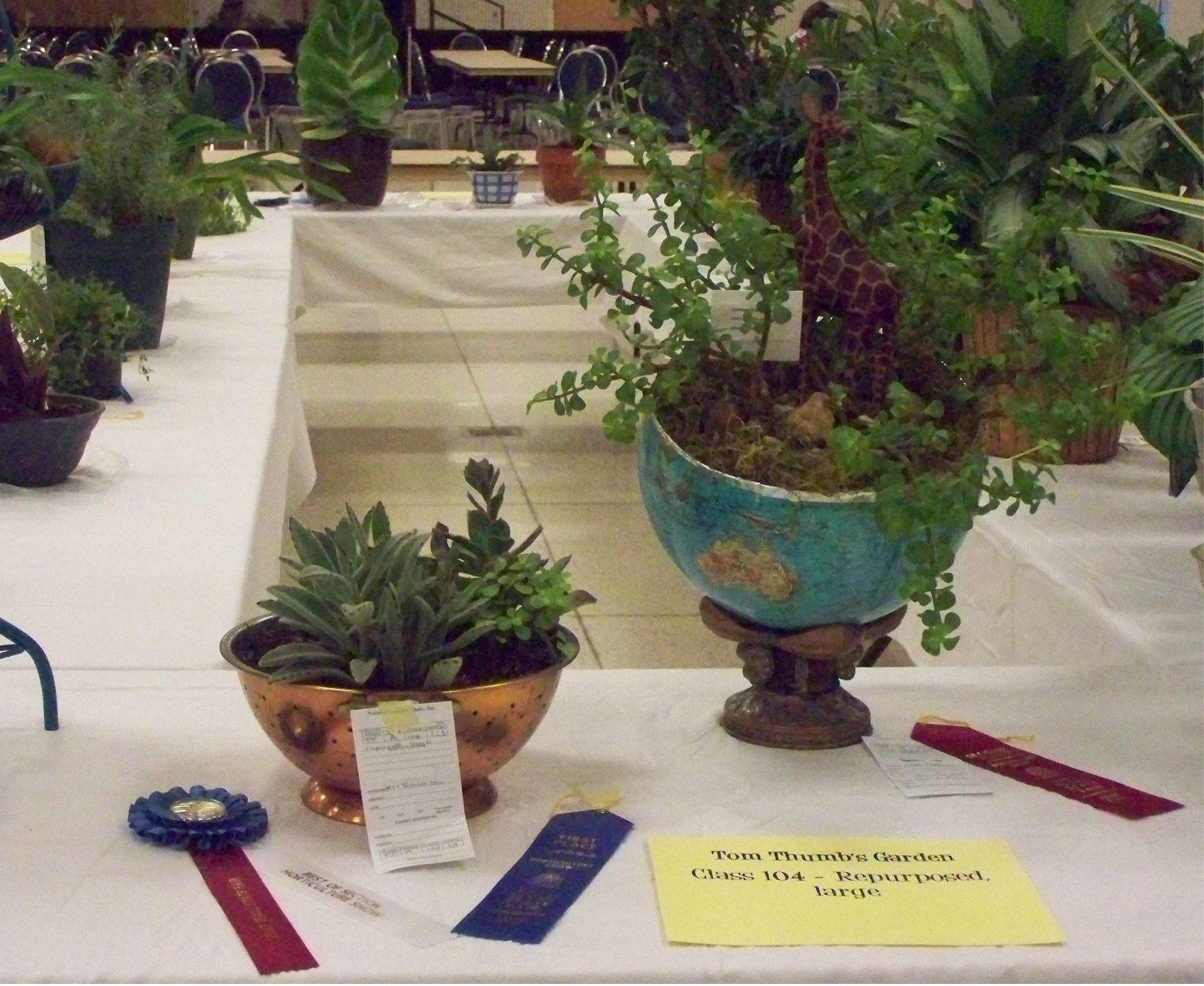 Horticulture Show