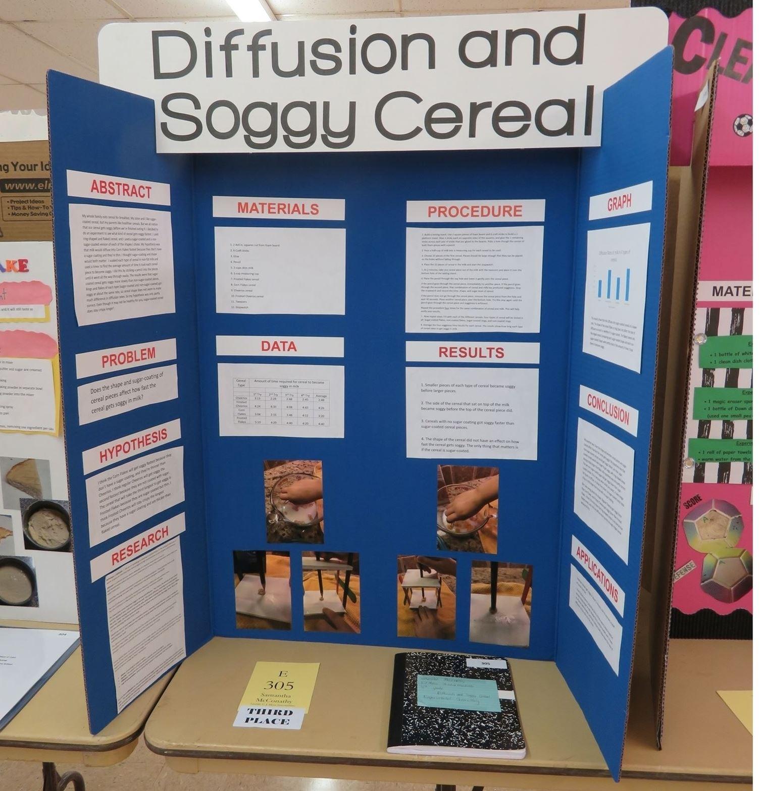science fair score sheet