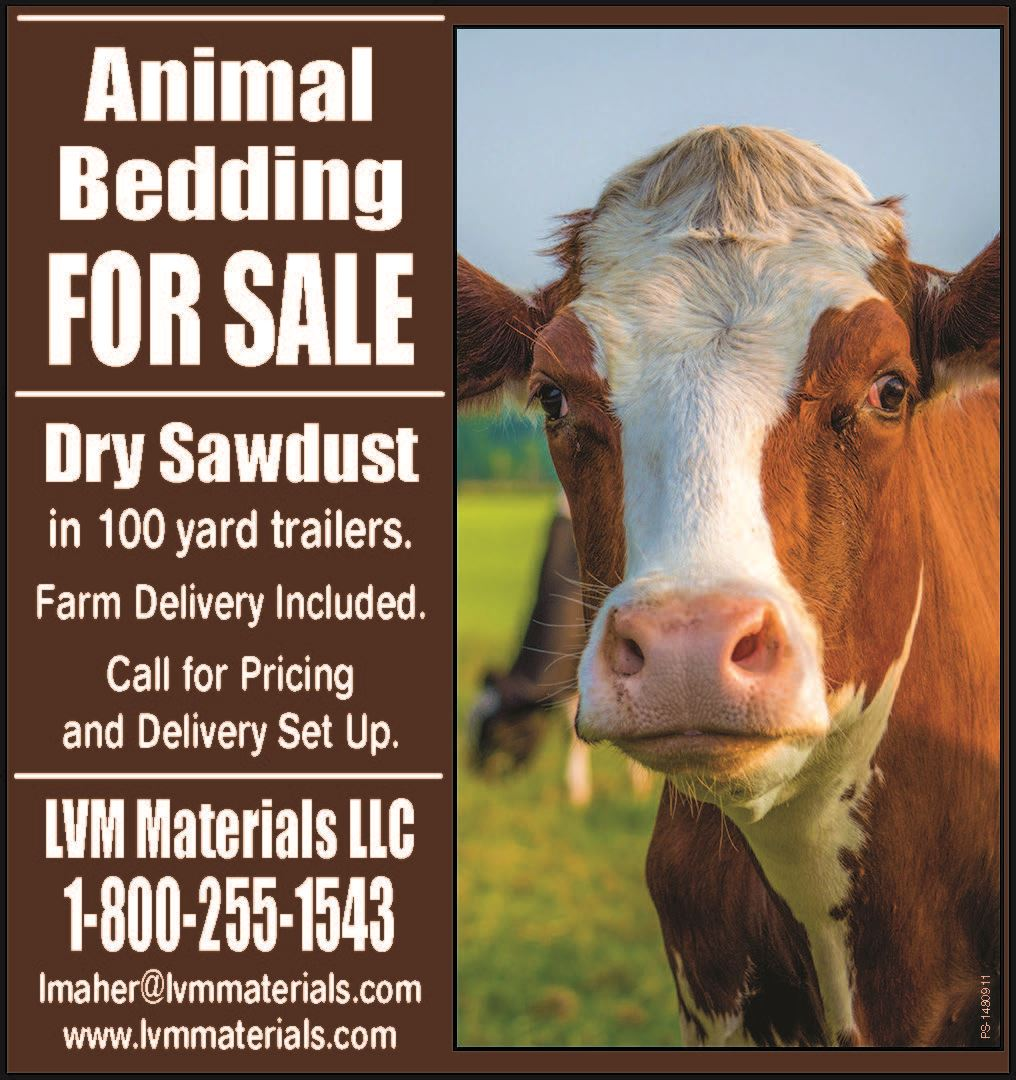 Animal Bedding for Sale at LVM Maaterials