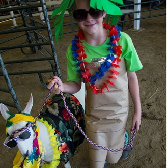 Photo of 4-H Sheep and Goat Dressing Contest