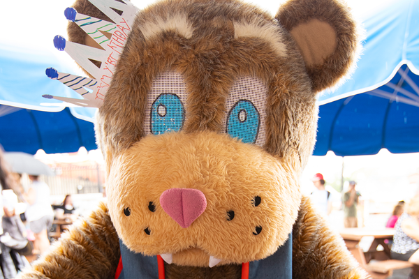 Photo of Fair Bear